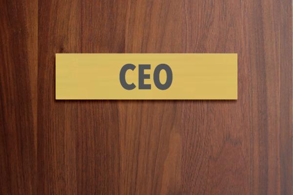 CEO Transformation