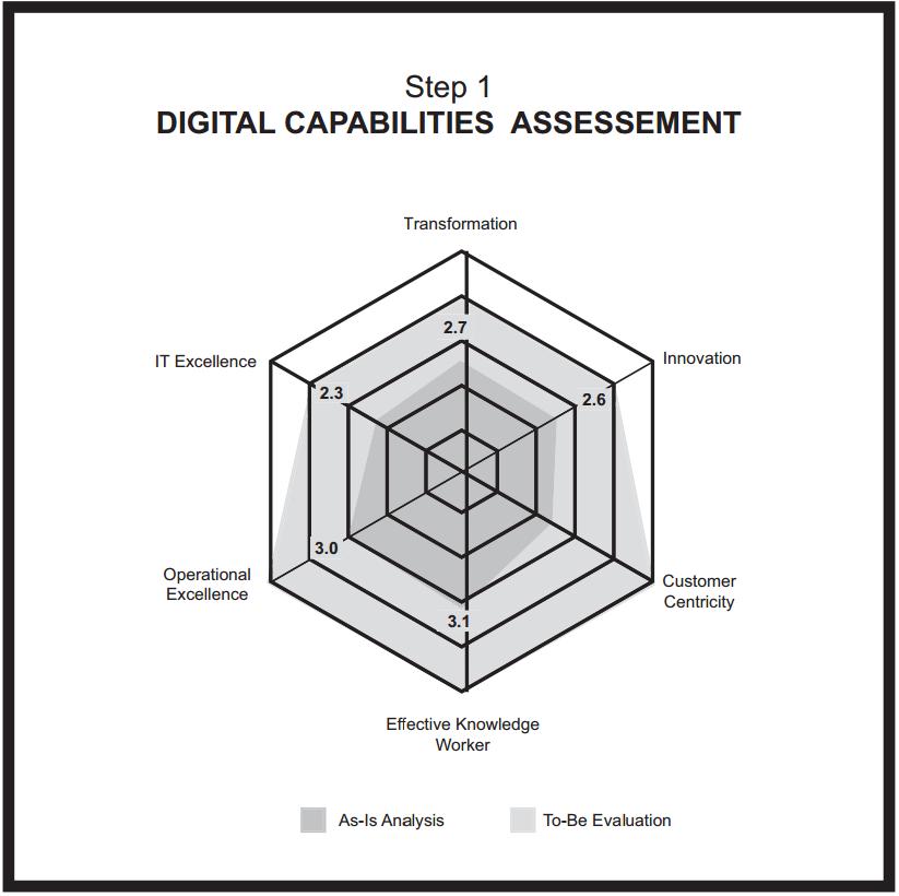Digital Capabilities Assessment